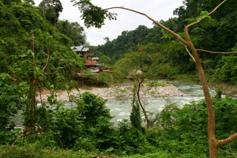 Accommodation area on the riverside of Bahorok River, Bukit Lawang