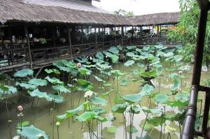 RM Ma' Pinah dan kolam teratainya