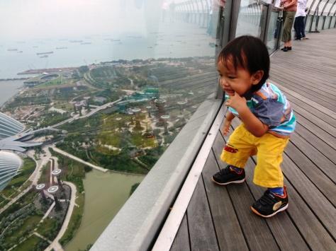 Marina Bay Sand Skypark