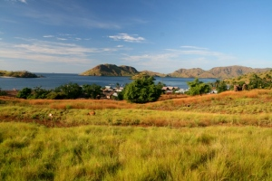 Bukit di belakang Kampung Komodo dengan pemandangan yang eksotis ke arah laut lepas
