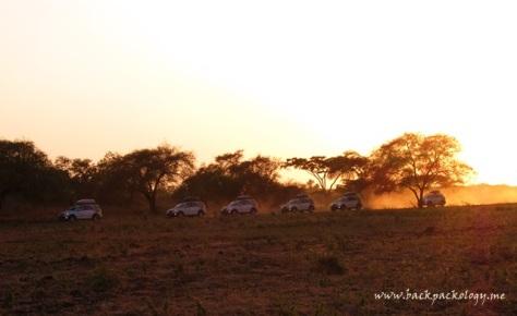 Terios tunggangan kami tak ketinggalan menyemarakkan pagi di TN Baluran
