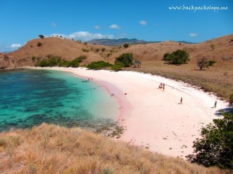 Pink Beach Komodo, terlihat jelas sangat pink dari atas bukit