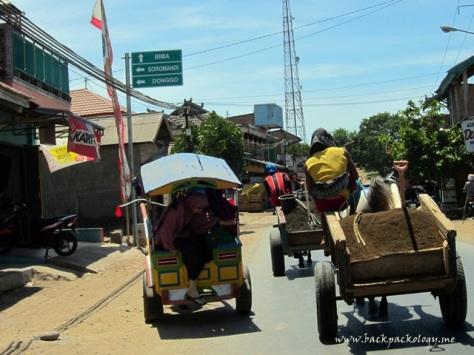 Anda harus bertoleransi dengan kendaraan berkuda di Pulau Sumbawa dan sekitarnya