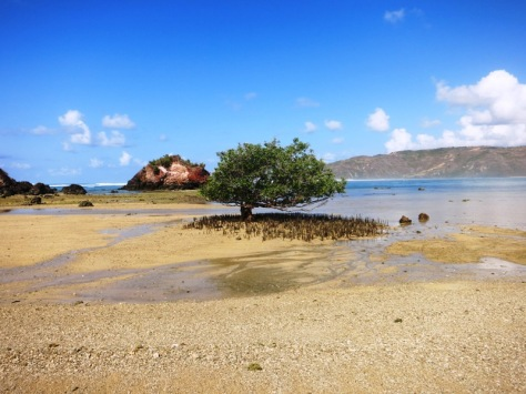 Pantai Putri Nyale