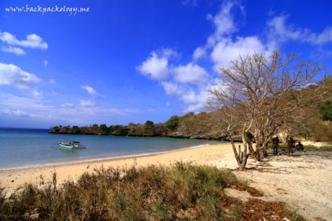 Pink Beach of Lombok