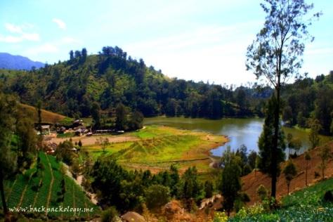 Ranu Pane dan kebun-kebun Suku Tengger yang terlihat jelas dari jalan-jalan sekitar perkampungan Suku Tengger di Desa Ranu Pane