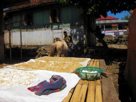 Lekde, makanan khas Bima yang berasal dari ketela, sedang dijemur sebelum disangrai