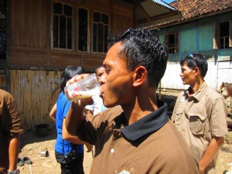 Salah seorang driver Terios 7 Wonders tak ketinggalan mencicipi lezatnya susu kuda liar Sumbawa
