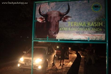Malam-malam Terios memasuki kawasan Taman Nasional Baluran