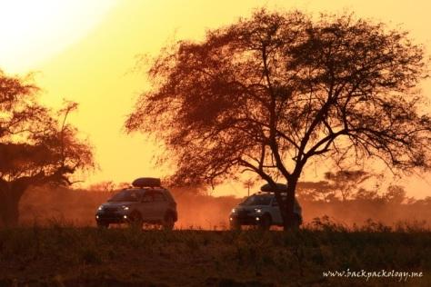 Terios in action di Afrika... eh di Baluran dink alias Africa van Java