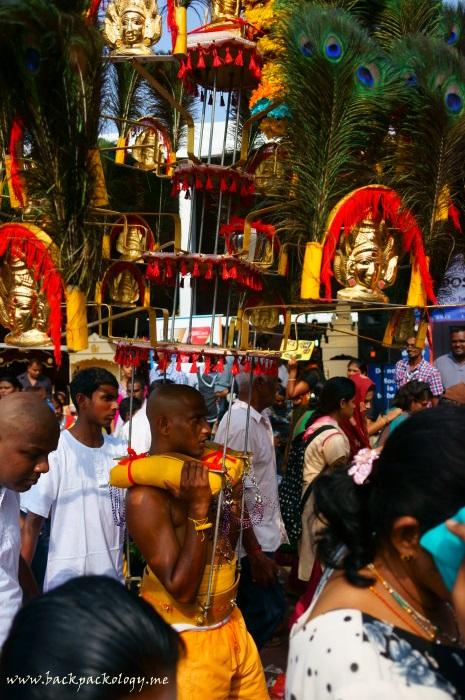 Sang pemuja (devotee) membawa kanopi yang berhias patung-patung dan bulu merak, beratnya bisa mencapai puluhan hingga ratusan kg...
