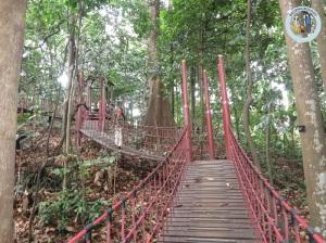 Jembatan gantung -- harapan yang sirna