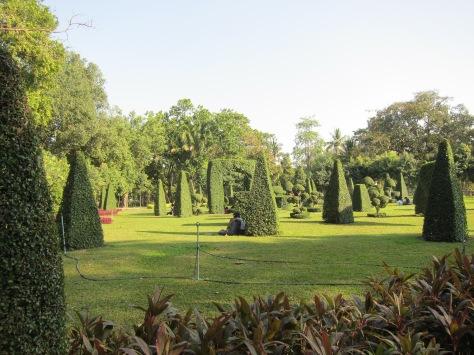 Taman di Kandawgyi dan sepasang insan