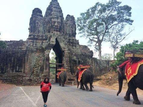 Solo traveler dan gajah